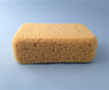 Poly Foam Bath Sponge